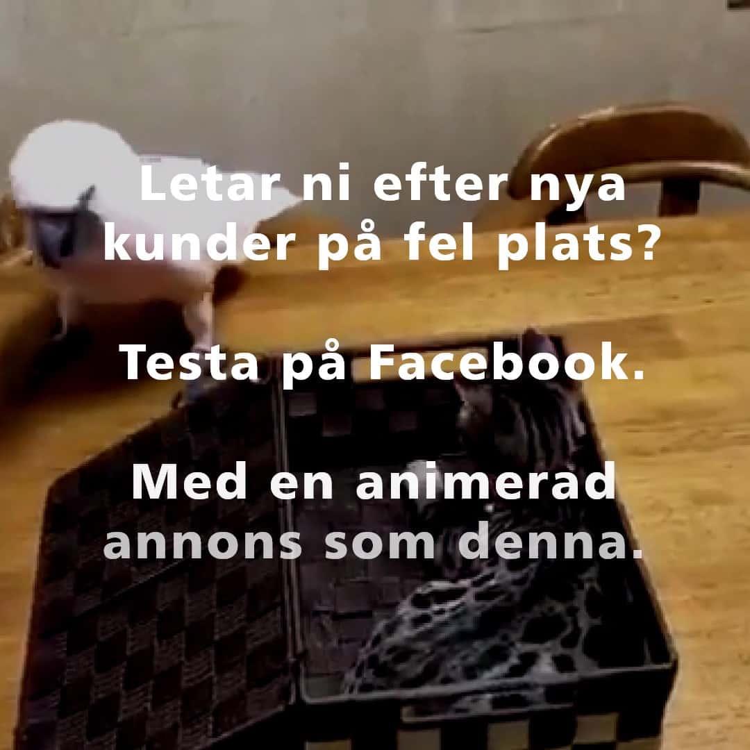FB Reklam Regemedia Facebookannonser_2